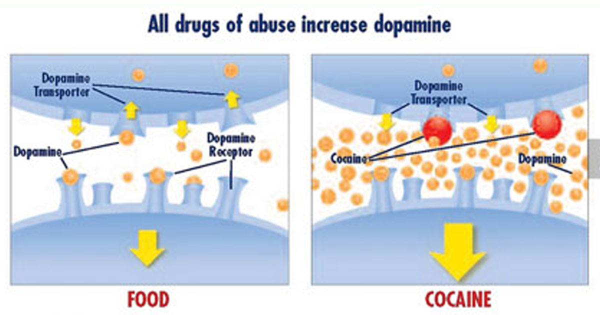 how does drug abuse affect personal The effects of drug abuse how many times has a person heard about the consequences of drug abuse have people ever really taken those consequences into account.